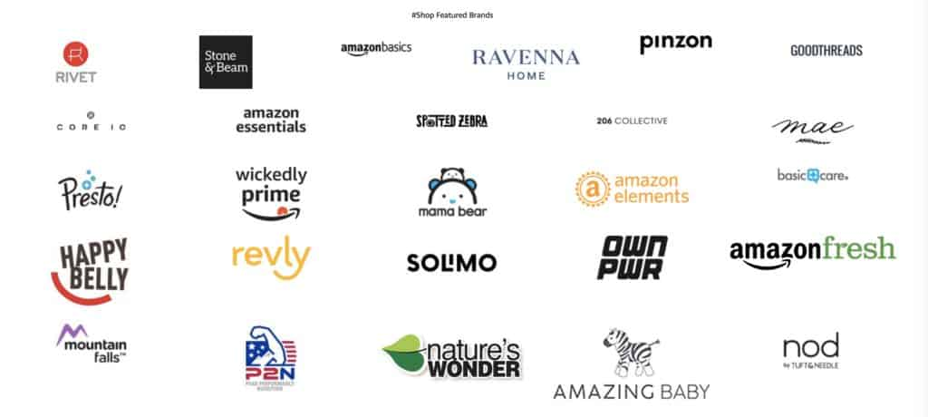 Amazons Own Major Brands